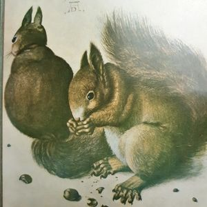 Vintage Wall Art - Vintage lithograph squirrels wall art